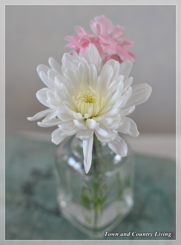 White mum and pink carnation