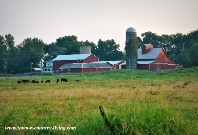 Red Barns in the Country via Town and Country Living
