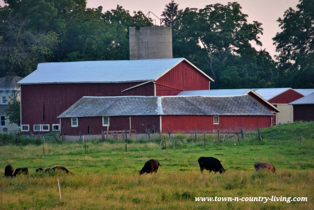 Red Country Barn - www.town-n-country-living.com