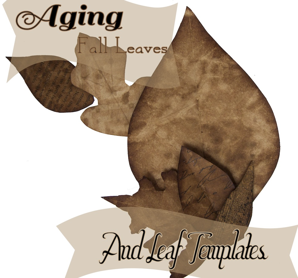 Aging fall leaves and Leaf Templates