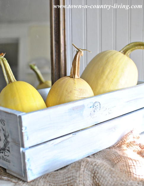 Spaghetti Squash used as Fall Decor via Town and Country Living