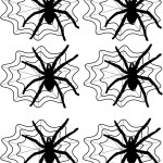 SpiderTags