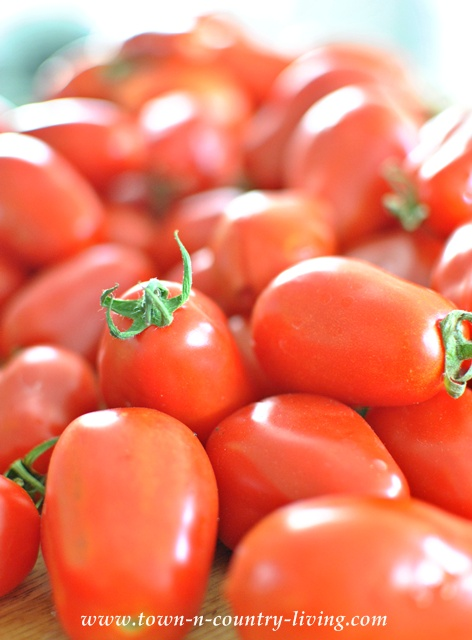 Roma Tomatoes for Roasted Tomato Soup