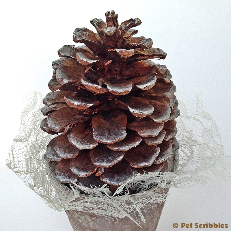 Pinecone Tree Craft (6)