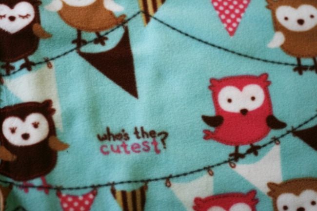 No Sew Fleece Blanket2