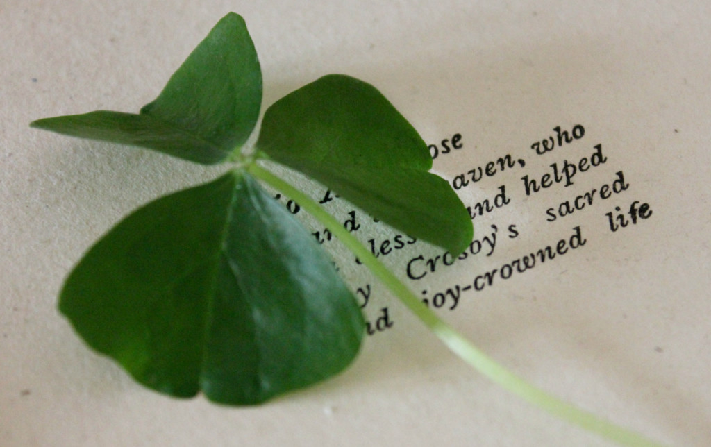 Shamrock-Old-Book
