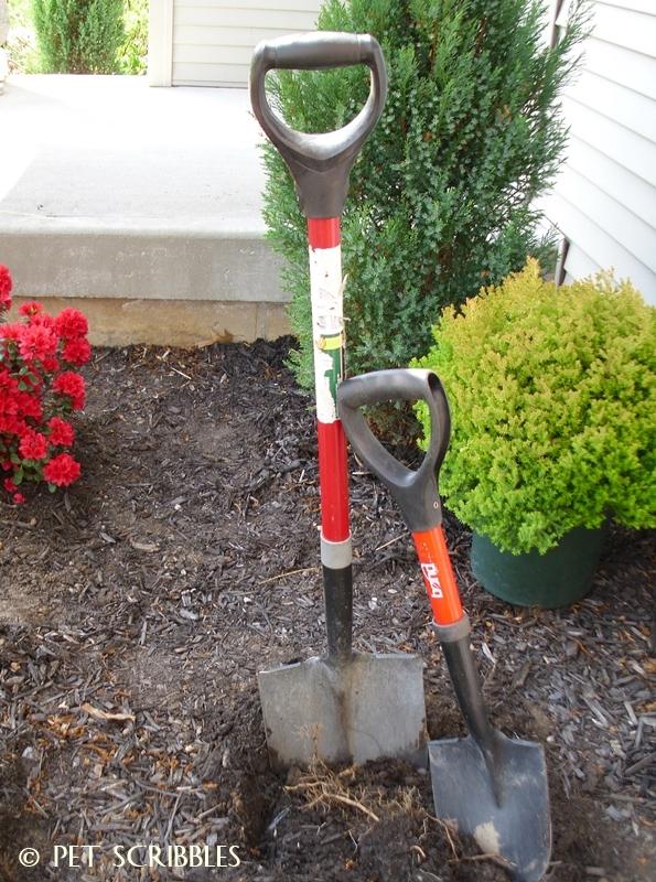 My petite garden shovel: smaller, and lighter but super tough!