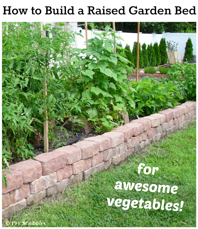 Build a Raised Garden Vegetable Bed