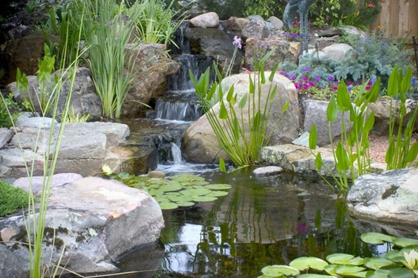 Why You Need a Backyard Pond - Live Creatively Inspired