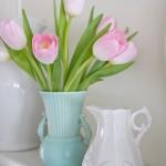 It's Tulip Time!