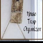 Mouse Trap Organizers