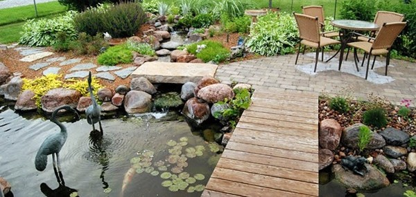Why You Need a Backyard Pond
